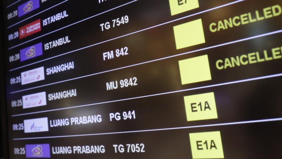 多家航空公司先後宣佈暫停來往中國的航班。