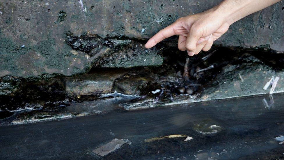 Una gran grieta en los cimientos del mercado de pescados