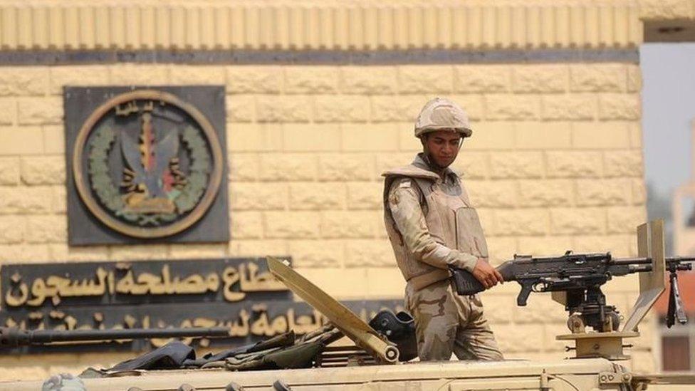 منظمة هيومن رايتس ووتش تدين إعدام 49 شخصا في 10 أيام في مصر