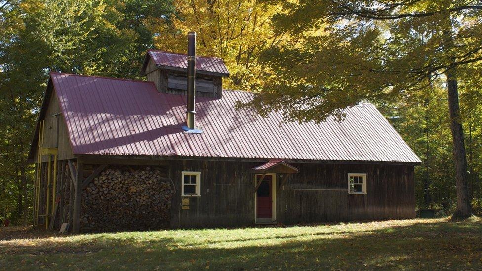 Mrs Grenier's sugar shack