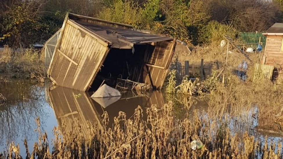 Damage to allotments