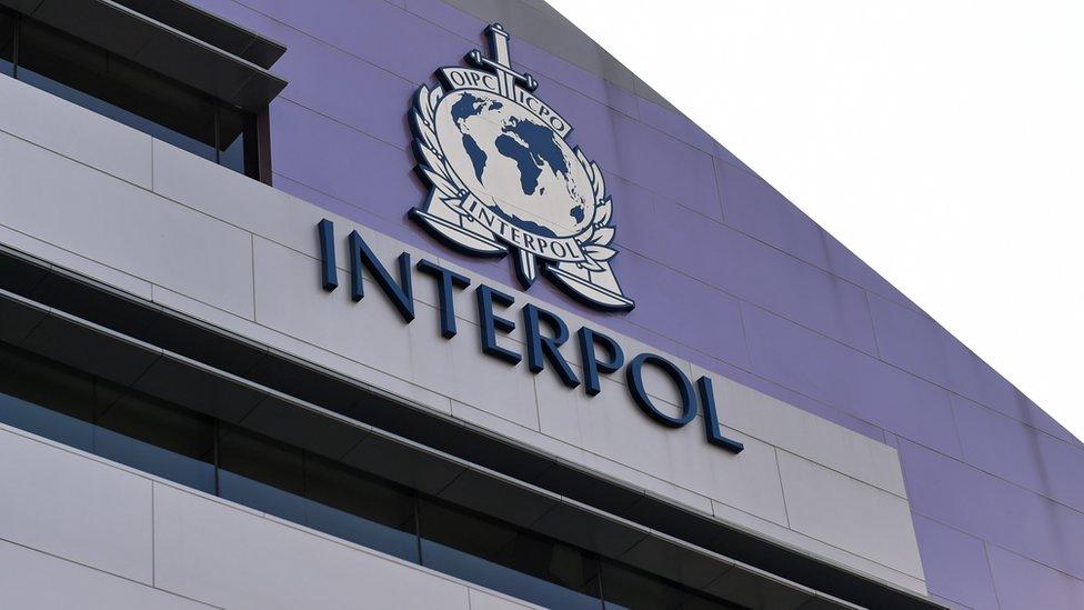 Logo Interpola na jednoj od upravnih zgrada ove međunarodne policijske organizacije