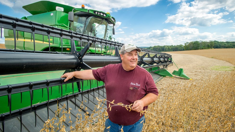 美國馬里蘭州農民站在大豆收割機旁