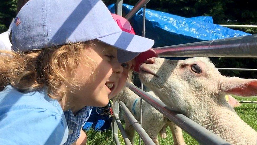 Wymondham school pupils flock to run miniature farm