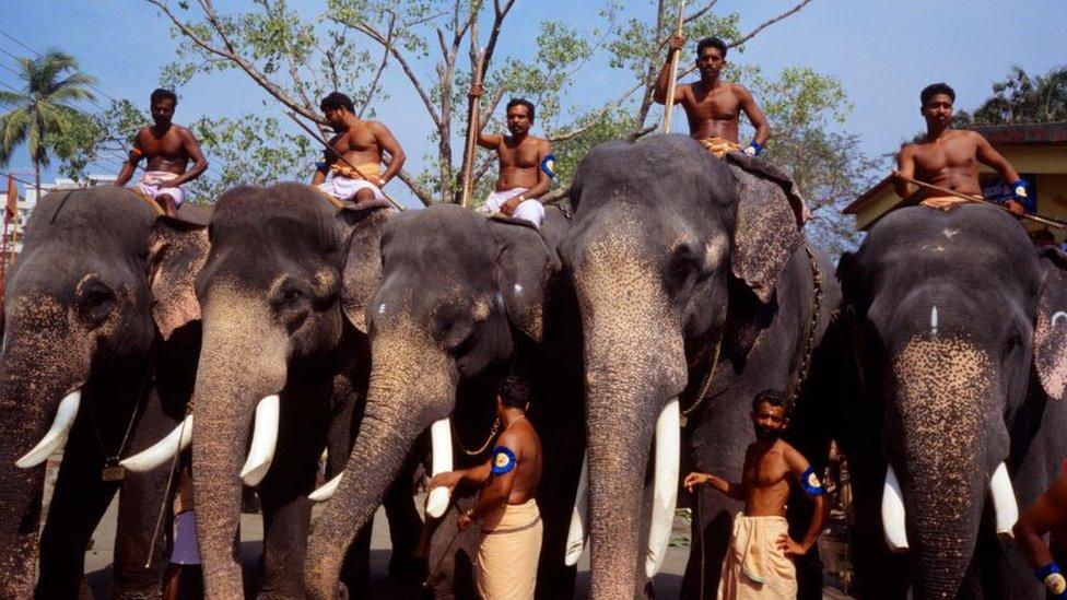 معبد غوروفايور يمتلك أكثر من 50 فيلا