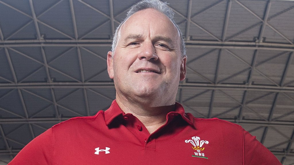 Wayne Pivac: Scarlets chief to succeed Warren Gatland as Wales coach