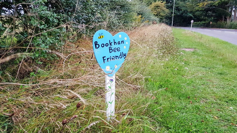 Blue Heart in Bookham