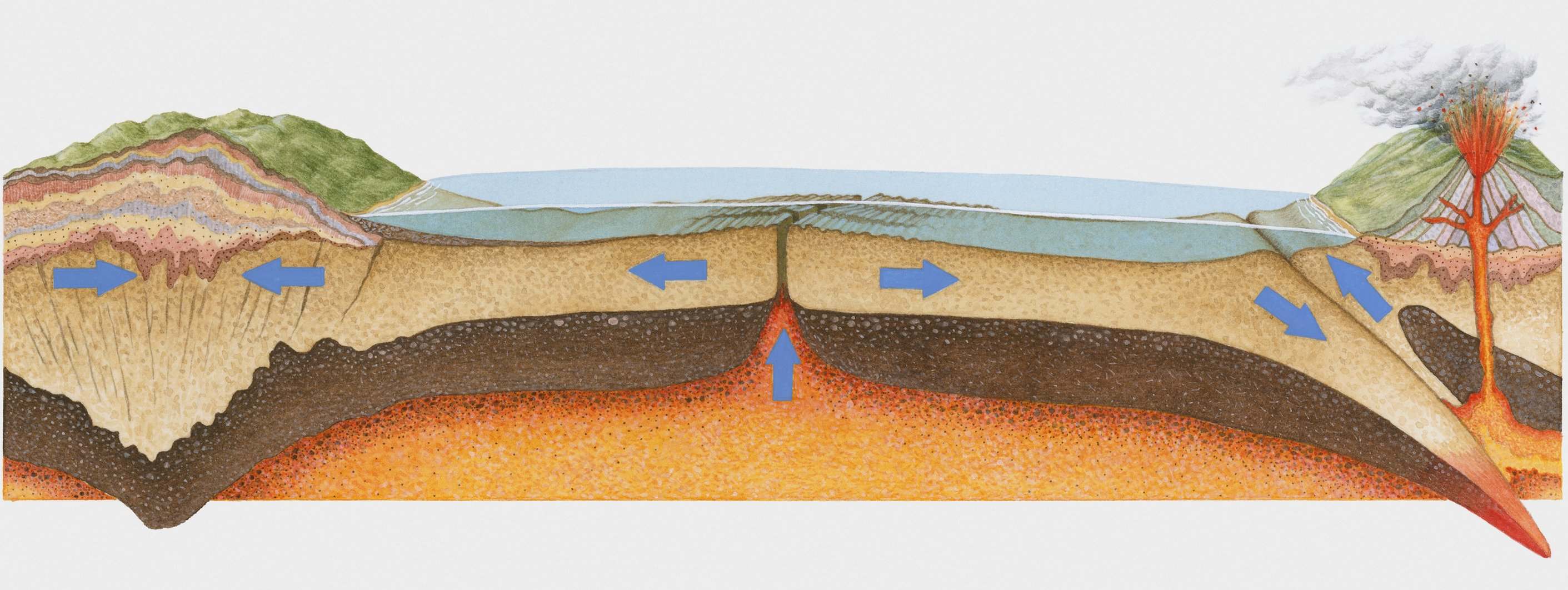 An illustration of plate tectonics