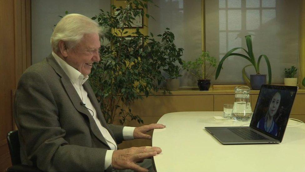 格蕾塔·桑伯格早前透過視像通話接受BBC自然科學節目主持人大衛·艾登堡(David Attenborough)訪問。
