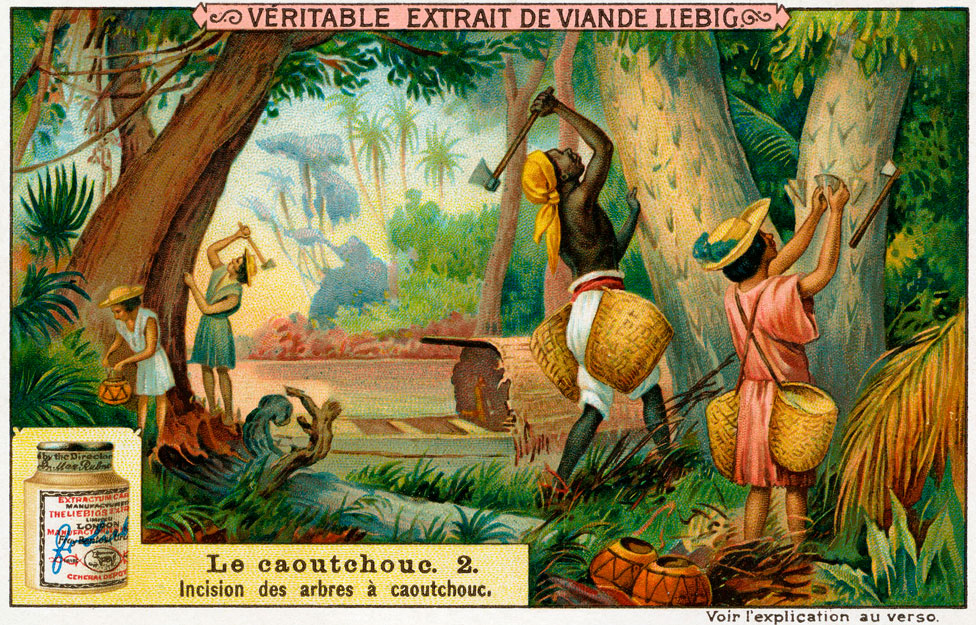 "A collectable card from a 1910 set showing the extraction of ""caoutchouc"""