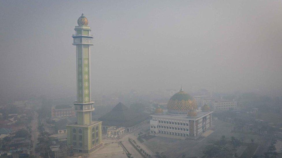 Asap beracun menyebar di seluruh negara ketika kebakaran terjadi dan bisa menyebar ke negara tetangga Malaysia dan Singapura