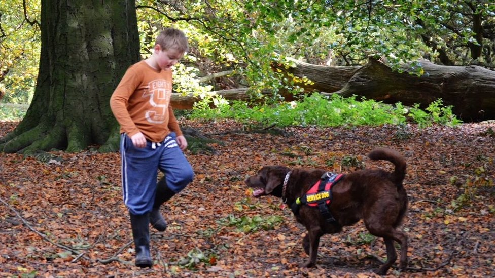 Ethan and dog Cocoa playing in the woods