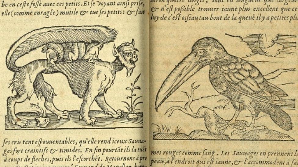 La bestia Sucarate, también denominada succarath o su(izq.) y el tucán (der.) - New York Public Library