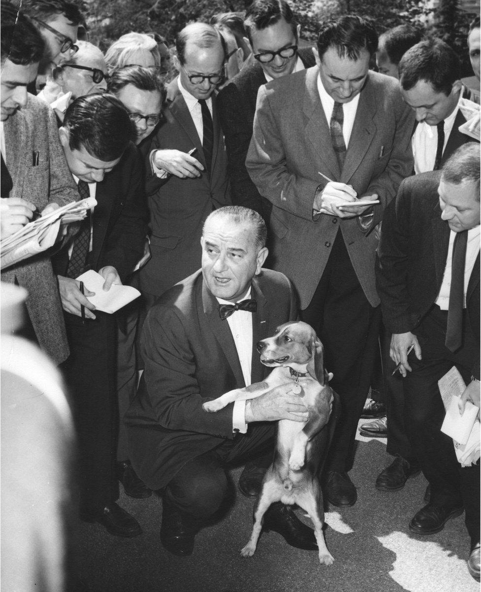 الرئيس ليندون جونسون يحمل كلبه بيغله، وهو يتحدث مع أعضاء الهيئة الصحفية للبيت الأبيض في عام 1964.