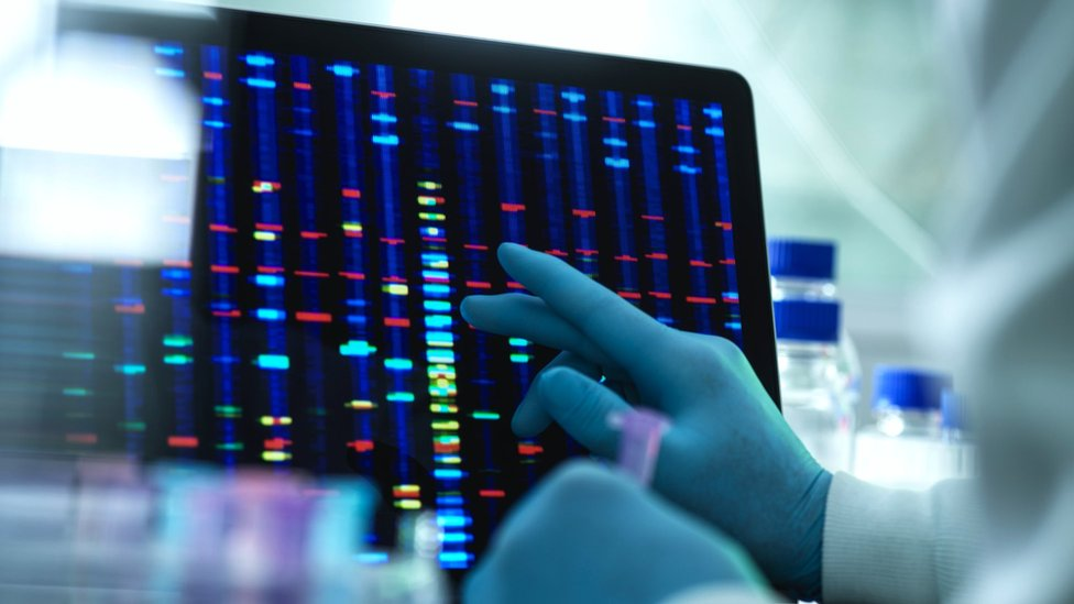 A scientist conducting genetic research (stock photo)