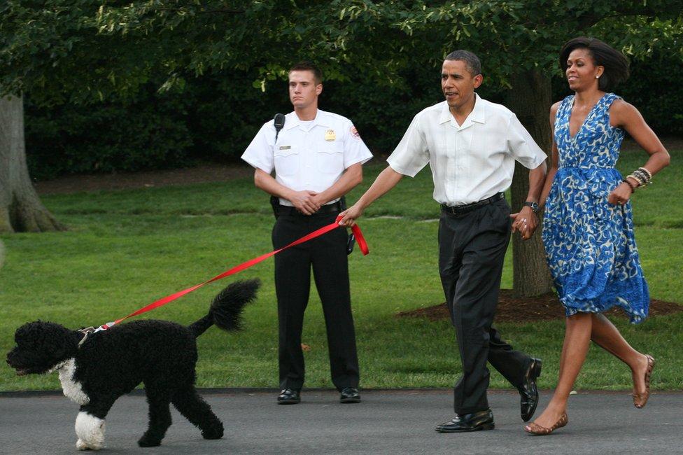 الرئيس باراك أوباما والسيدة الأولى ميشيل أوباما يصطحبان كلبهما بو في نزهة لأعضاء الكونغرس في الحديقة الجنوبية للبيت الأبيض في عام 2010.