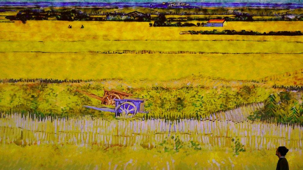 Mujer viendo un cuadro de Van Gogh