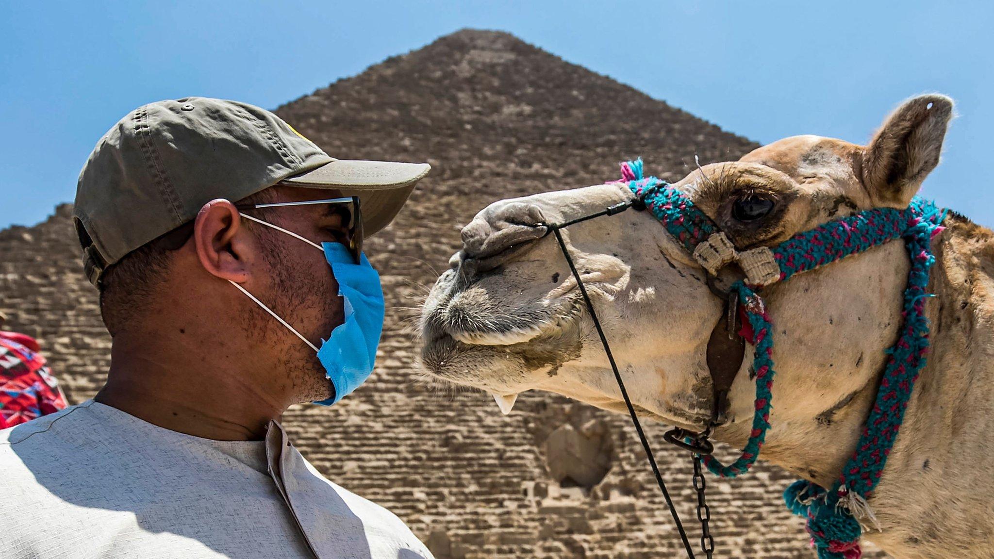 Egypt Desperate To Revive Coronavirus Hit Tourism Industry Bbc News