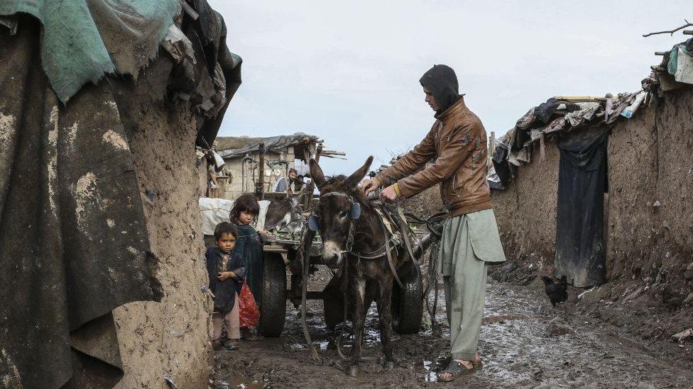 porodica u Avganistanu