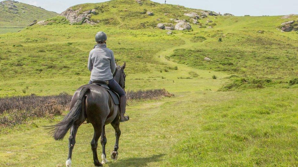 Riders 'too fat' for Dartmoor trek horses