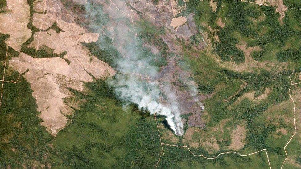 अमेज़न के जंगलों में इस साल आग लगने की रिकॉर्ड 75000 घटनाएं