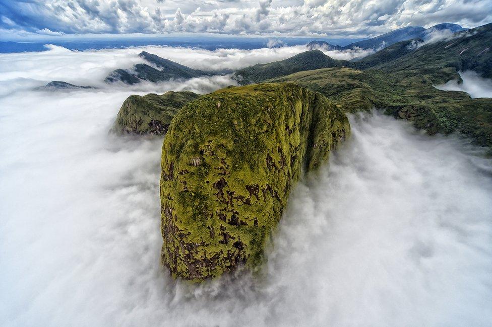 Planinski vrh pokriven zelenilom se uzdiže iznad oblaka