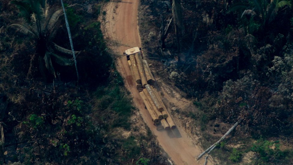 Aerial view showing a truck carrying tree trunks along a road in a deforested area in the surroundings of Boca do Acre, a city in Amazonas State, in the Amazon basin in northwestern Brazil,