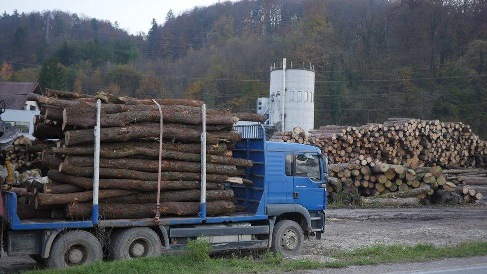 Logs outside Sevnica