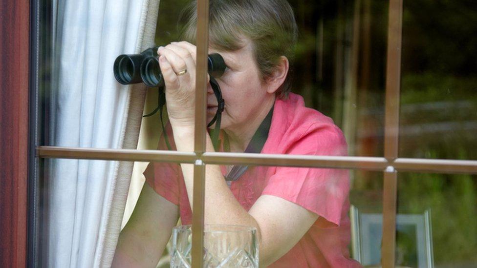 Una mujer mira por la ventana con larga vistas.