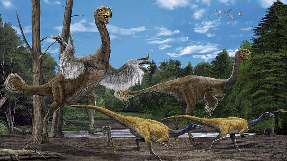 Artists impressions of the Gigantoraptor and the Microraptor