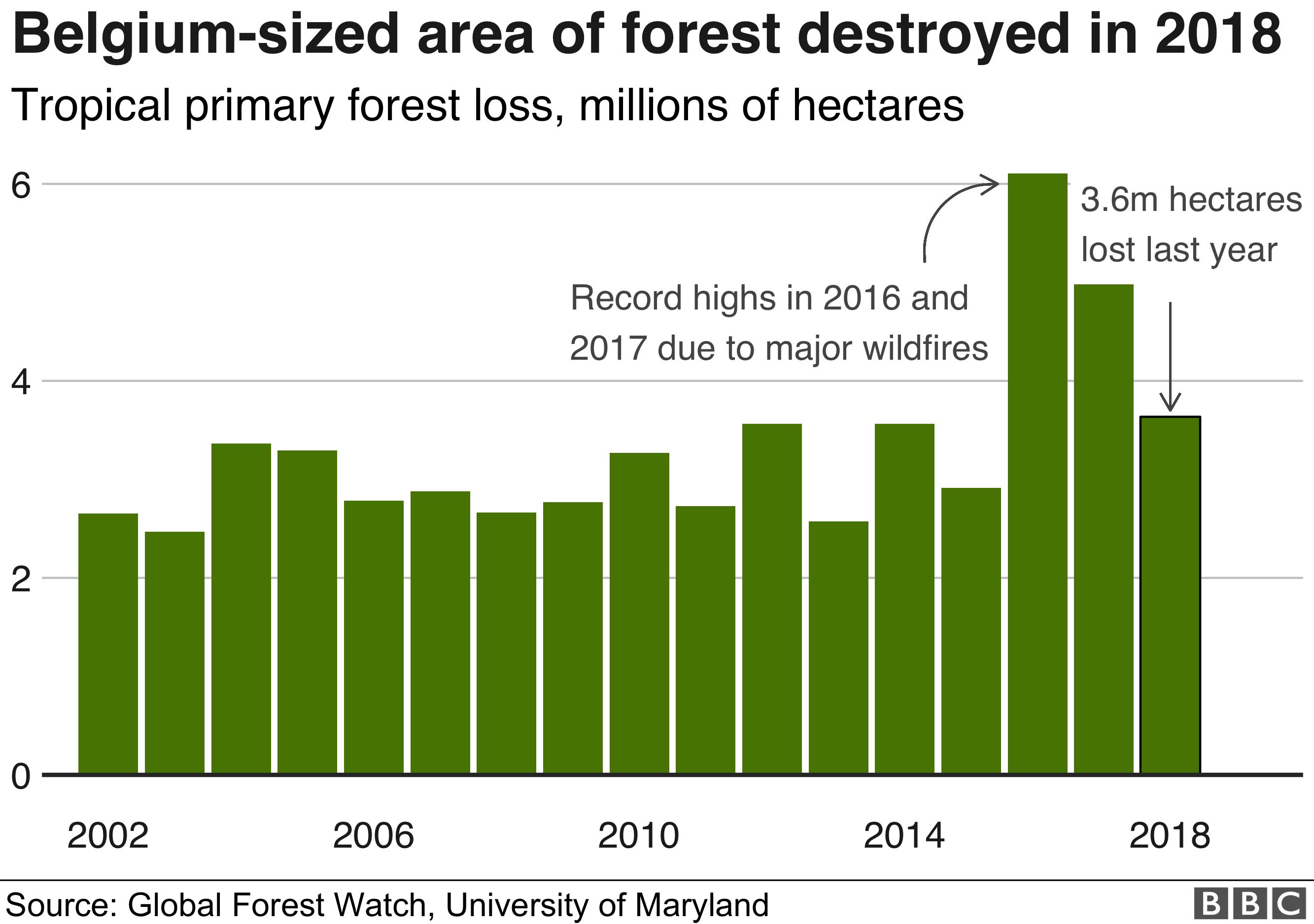 destruction of habitats due to mining bitcoins