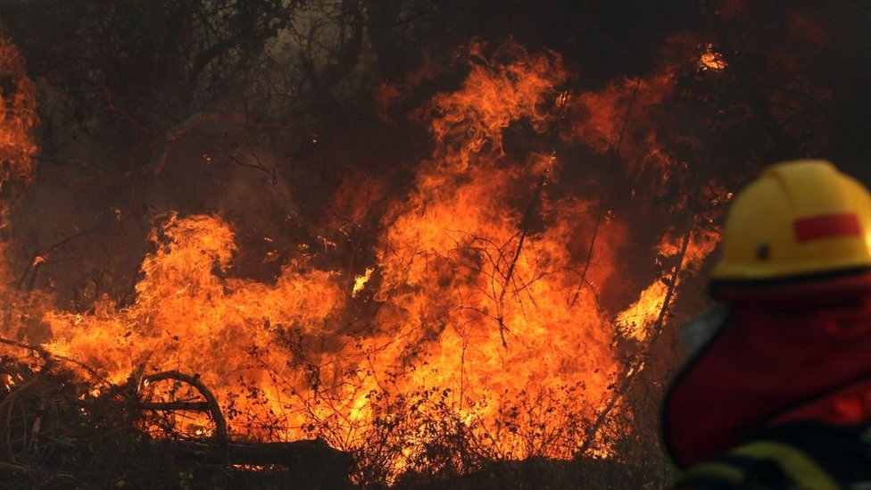 Fireman looks at a wildfire in the Pantanal