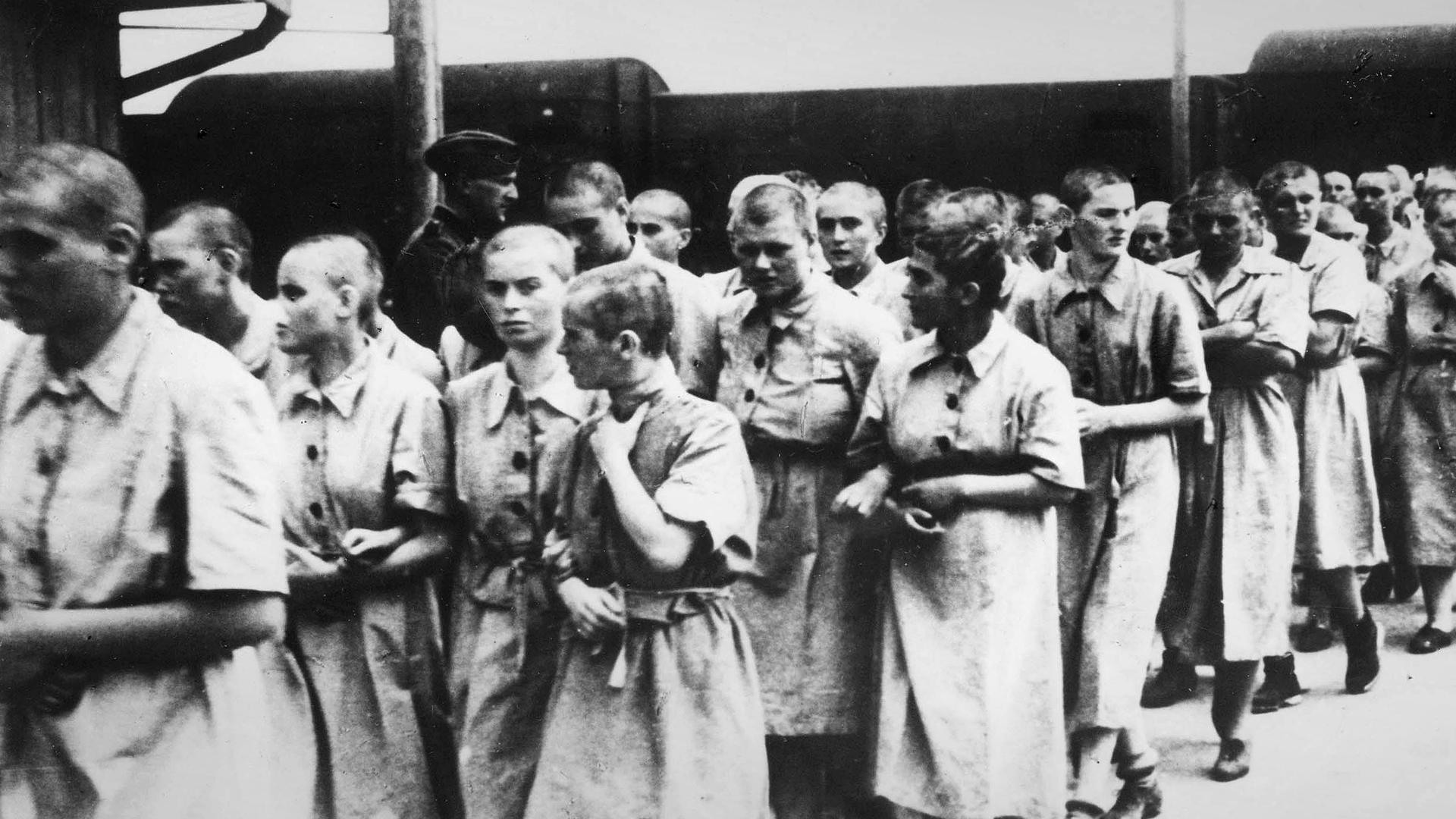 """Žene u Aušvicu koje su proglašene """"radno sposobnim"""", 1944"""