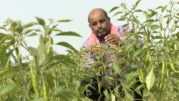 Vijendra Tadvi mengatakan pemerintah seharusnya mengeluarkan dana untuk petani, bukannya patung.