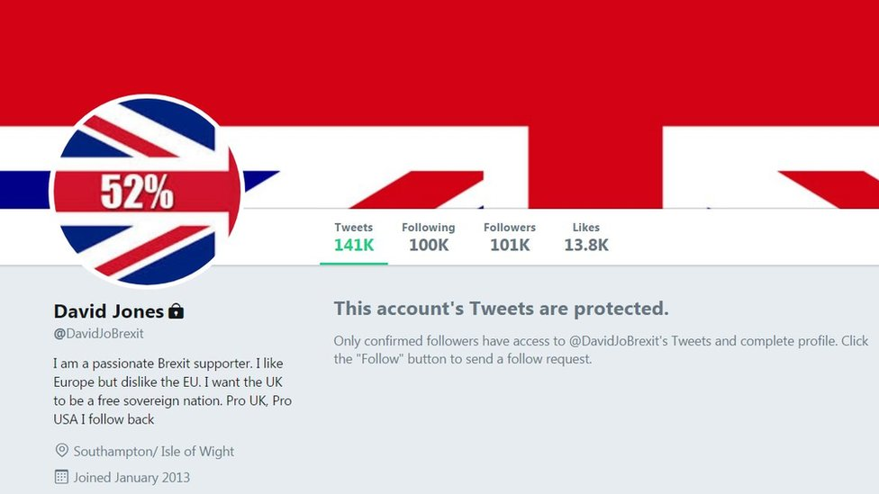 Screen grab o @DavidJoBrexit's twitter account