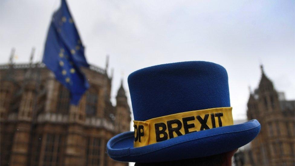 Brexit protest
