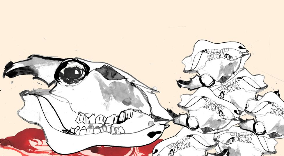 lobanje i kosti