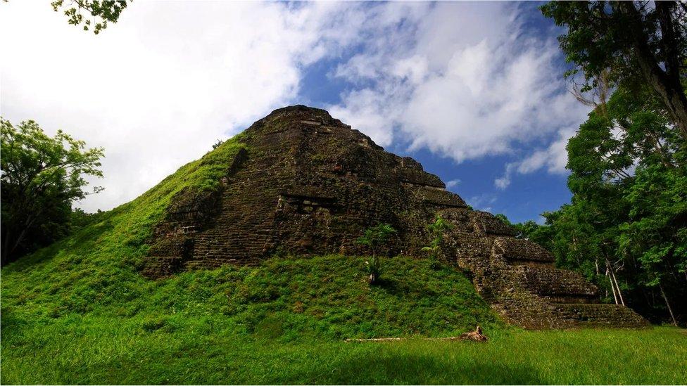 Una edificación maya cubierta de vegetación