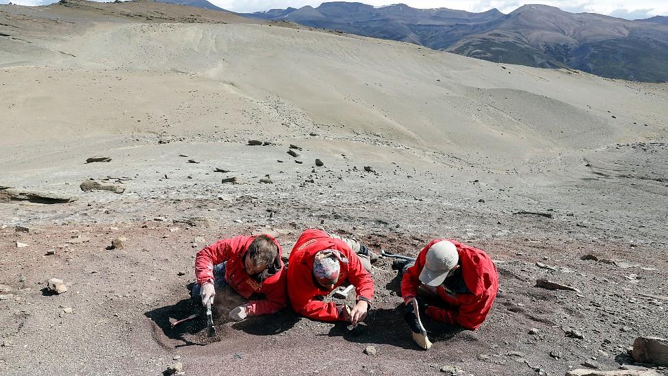 Paleontólogos en el Valle del Río de las Chinas