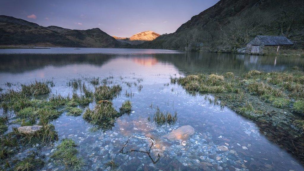 Yr hebog aur: Llyn Dinas yn Eryri. Copa euraid Moel Hebog yn cael ei adlewyrchu gan yr haul // Llyn Dinas near Beddgelert. The golden peak of Moel Hebog reflected by the sun