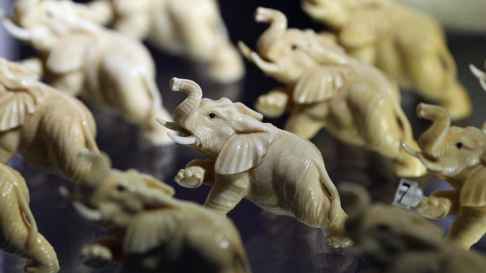 Elefantes hechos de marfil