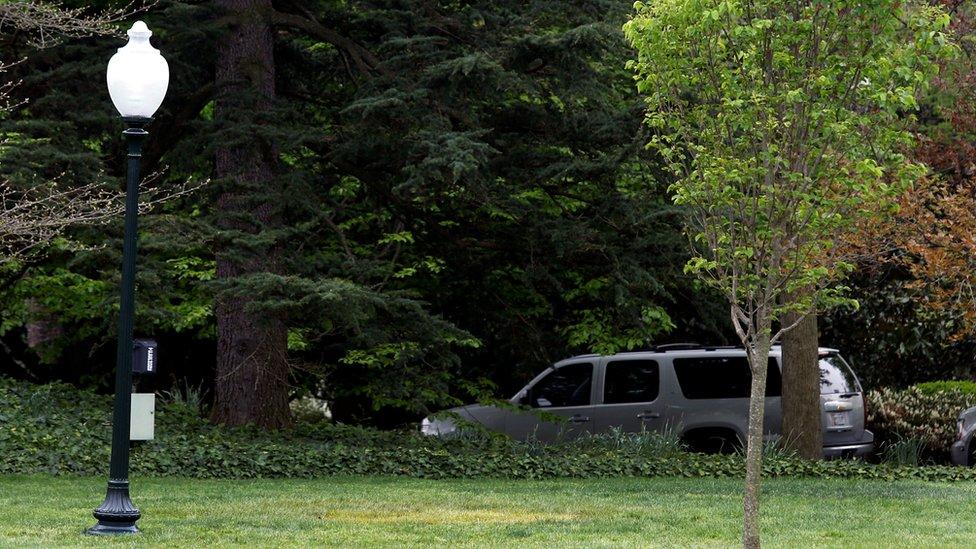 Fotografía de los jardines de la Casa Blanca donde se plantó el árbol que Macron regaló a Trump.