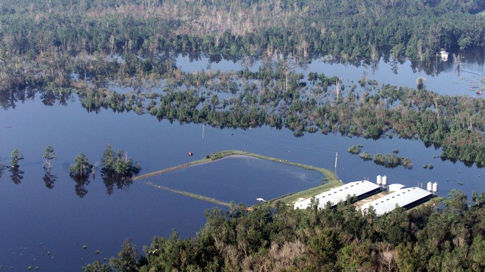Hurricane Floyd aftermath in North Carolina 1999