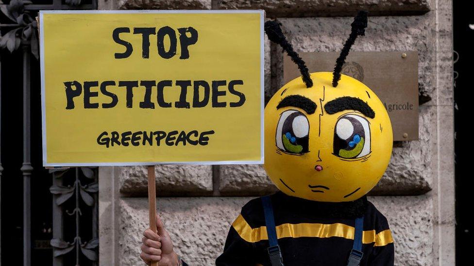 Protesta contra los pesticidas