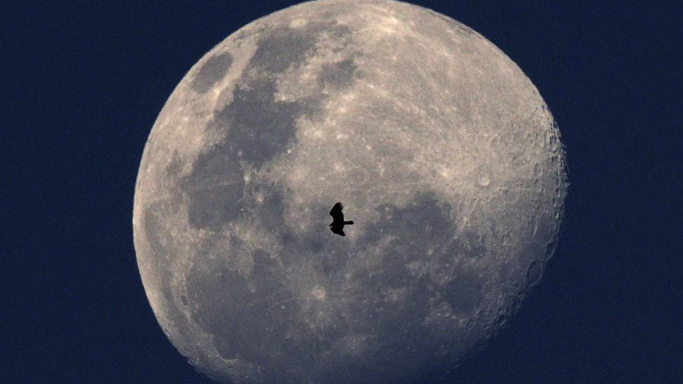 """Predviđa se da će """"kolebanje"""" Mesečeve orbite, zajedno sa rastom nivoa mora zbog klimatskih promena, 2030-ih dovesti do povećanja opasnosti od plavljenja obala"""