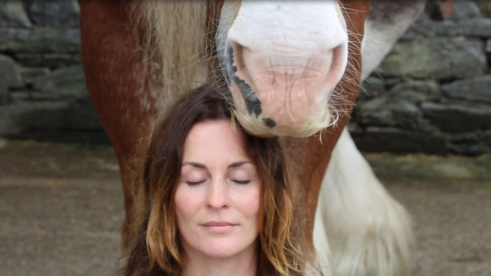 Cumbrian farm launches horse meditation sessions