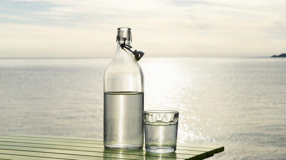 Botella y vaso con agua con el mar de fondo.