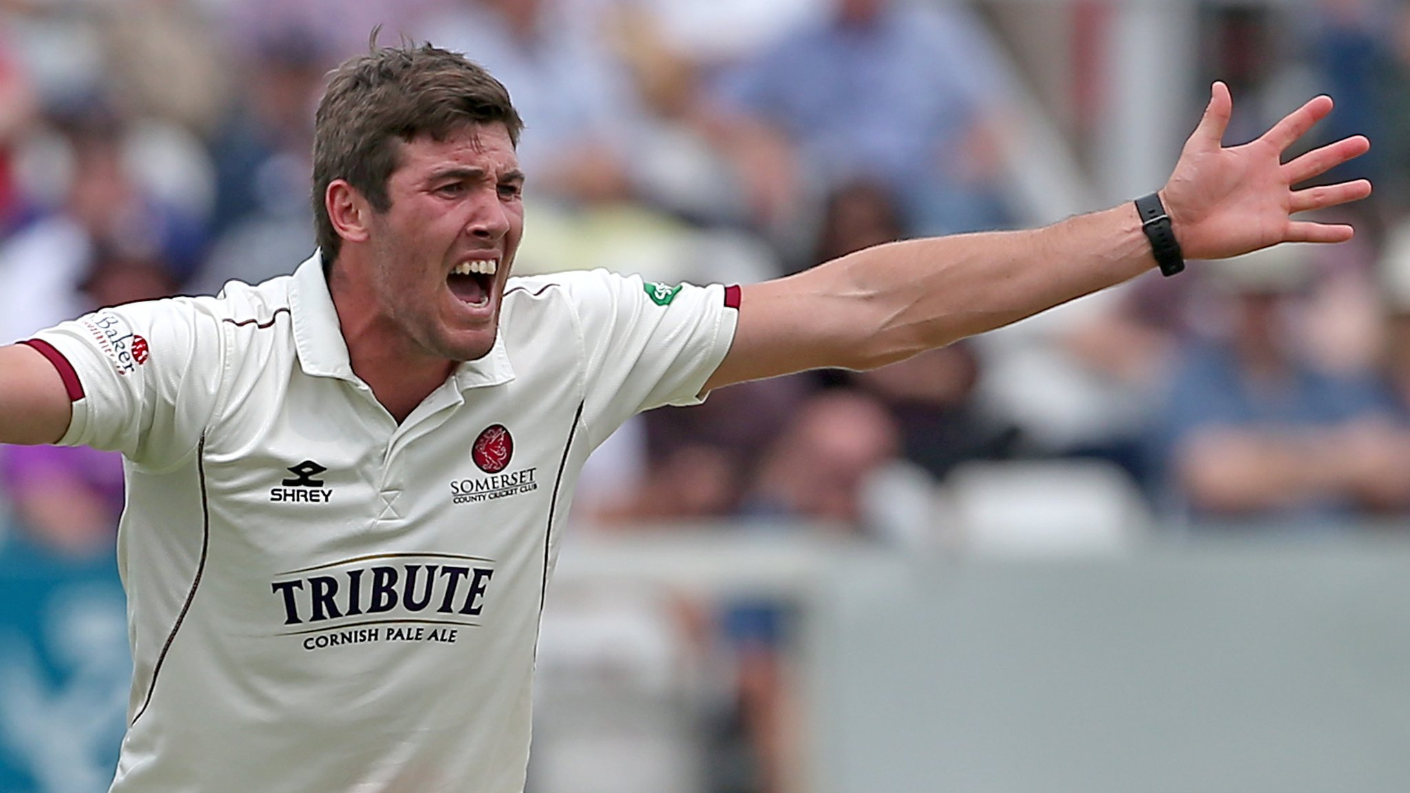 County Championship: Somerset bowl out Essex despite Alastair Cook's 80