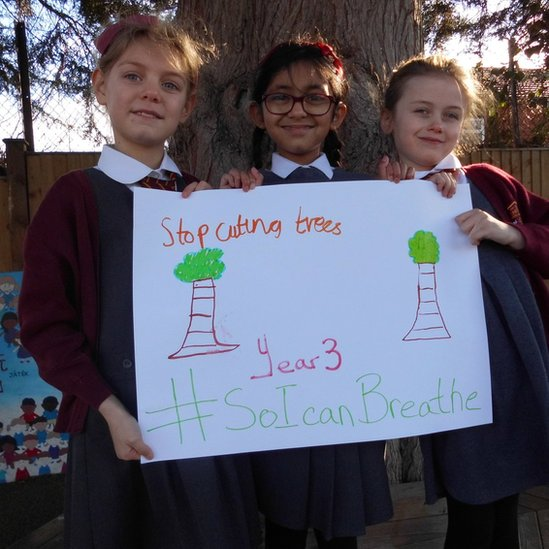 "Phoebe (left), Joleen (centre), Isobel (right) holding a picture of some trees with the words ""Stop cutting trees, year 3, so I can breather."""