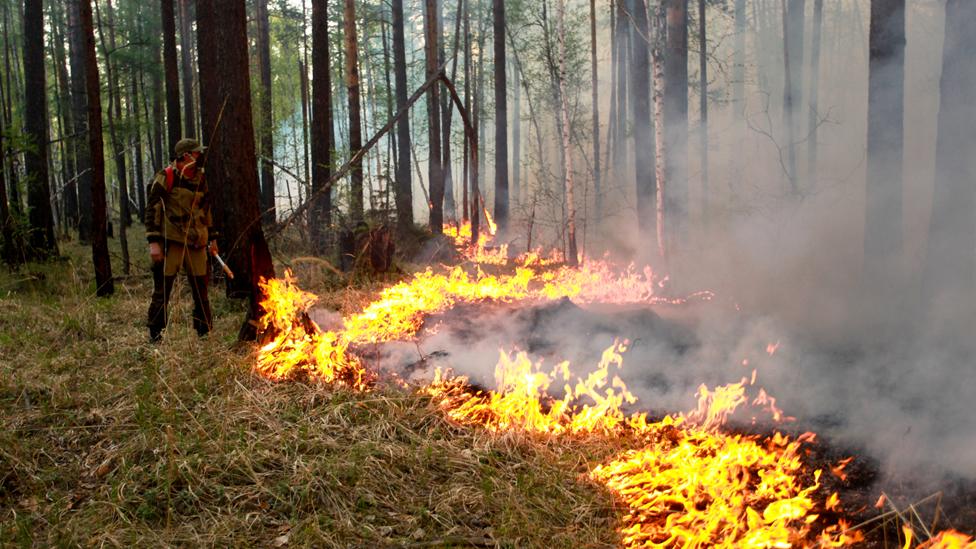 Un bombero está parado frente a un incendio forestal